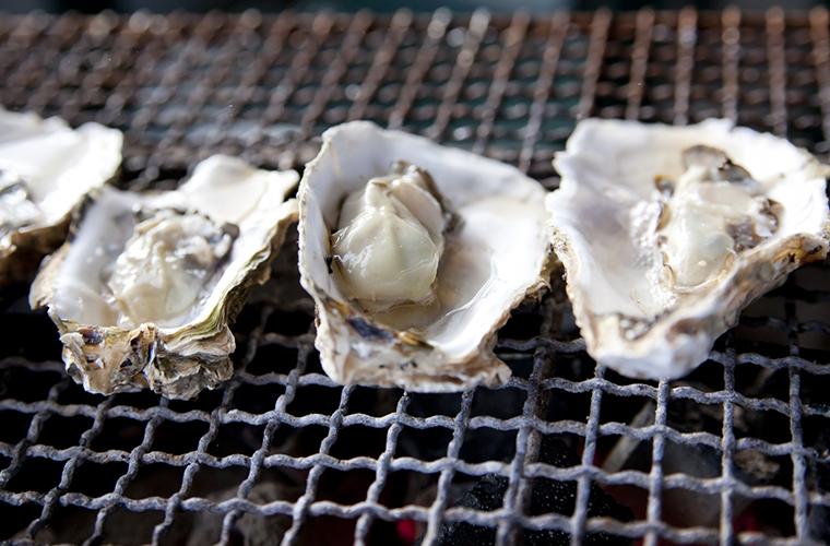姫路とれとれ市場「かきフェア」牡蠣の直売やここでしか味わえない牡蠣料理を楽しんで