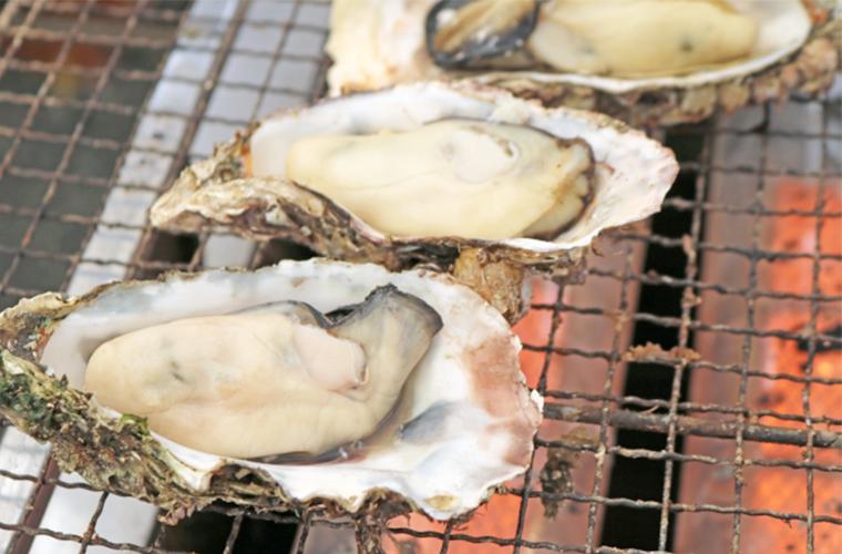 【たつの】冬の人気イベント「室津かきまつり」とれたての牡蠣を堪能して