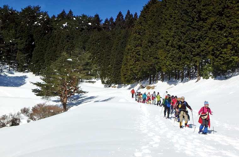 冬の癒やし体験ツアー~スノーシューハイキング~