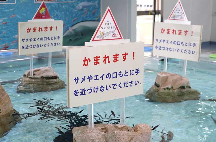 【姫路水族館】料金や駐車場、イベント情報がまるわかり!1日中楽しもう!
