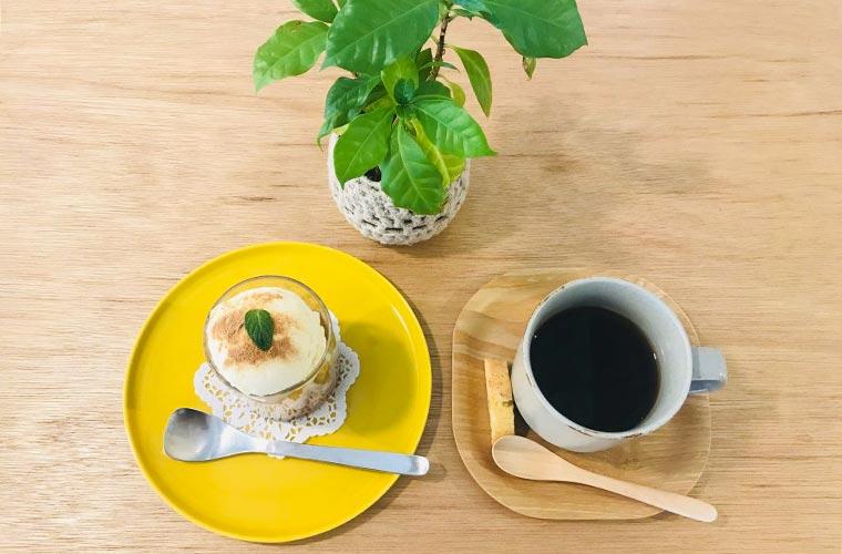 【稲美町】おしゃれな「ことりカフェ」でのんびりランチを楽しんで♪子連れOK!