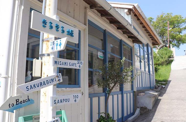 【移転】のんびり静かな保護猫カフェ「海ねこビーチハウス」(赤穂)