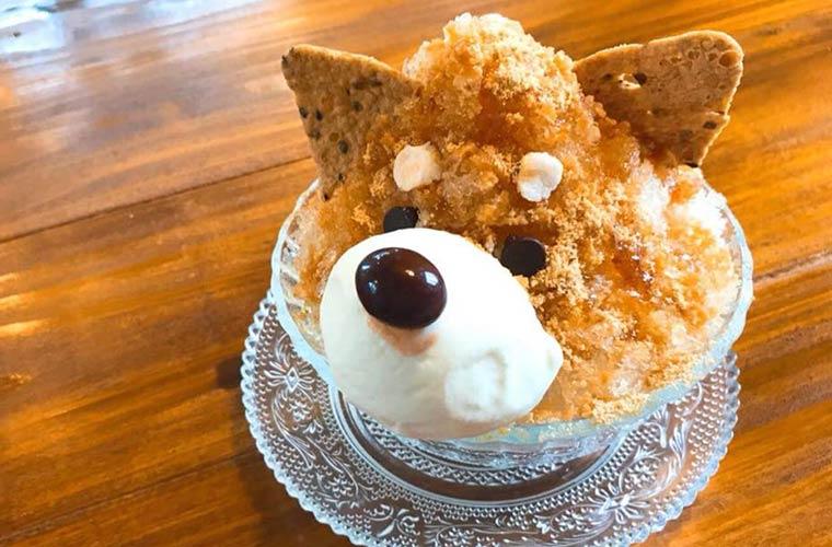 【佐用】爽やか夏気分!海をイメージしたおしゃれなカフェ「N827」かわいいかき氷も登場!