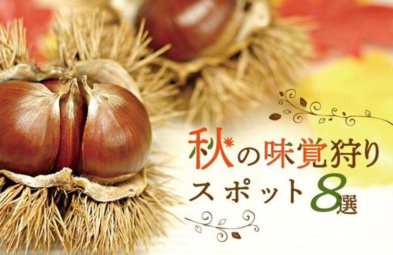 この秋おすすめ!旬の果物や野菜が味わえる兵庫県の味覚狩りスポット8選(2019)