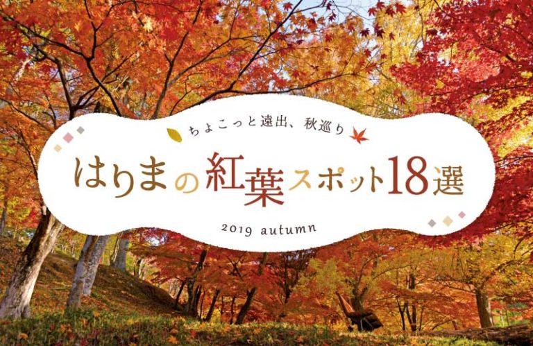 兵庫県の紅葉おすすめスポット18選! 見頃やライトアップ情報も【2019】姫路・加古川周辺