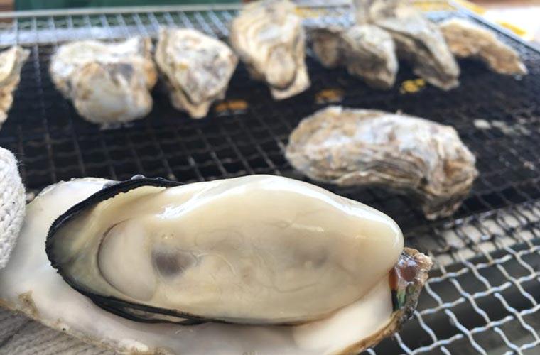新鮮な牡蠣が味わえる!兵庫県のかきまつり5大イベントを紹介!(2020)
