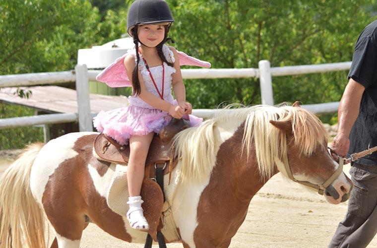 参加無料!ポニー乗馬体験&記念撮影ができる♪ ふれあい動物園も同時開催!