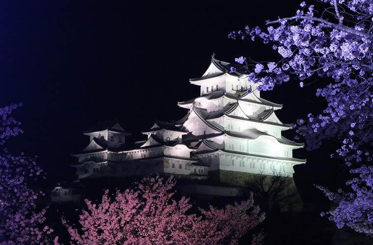 年間通してライトアップされる姫路城!年に数回の特別バージョンも紹介♪