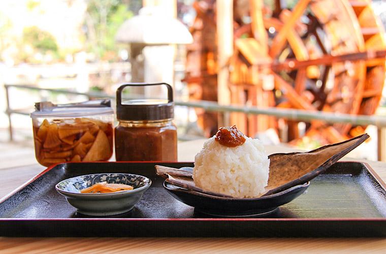 【市川】古民家レストラン「勢賀の郷(せかのさと)」自然豊かな景色を眺めながら心落ち着く食事を