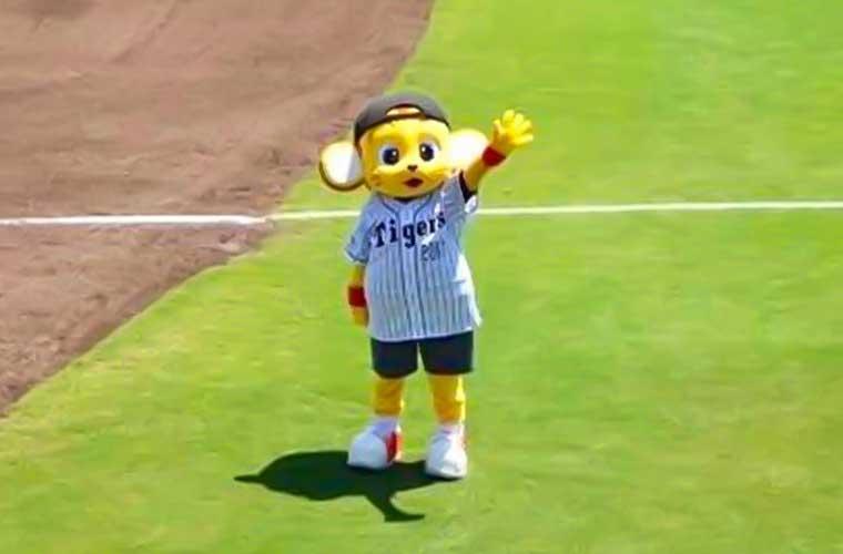 【姫路】プロ野球ウエスタン・リーグ公式戦!阪神タイガースvs福岡ソフトバンクホークス