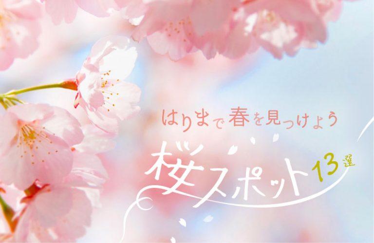 【2020】兵庫・姫路周辺のおすすめ桜スポット13選!花見で春を満喫♪ ライトアップ情報も