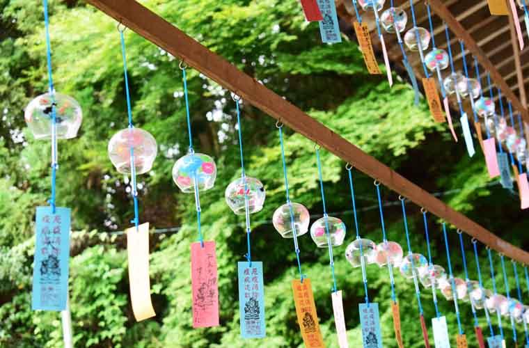 【佐用町】SNSで話題!光明寺境内で涼を誘う第6回「風鈴まつり」を開催!