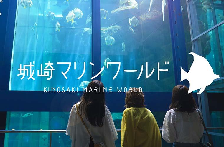 【兵庫】「城崎マリンワールド」2020年の最新情報 子供連れや女子旅におすすめの水族館♪