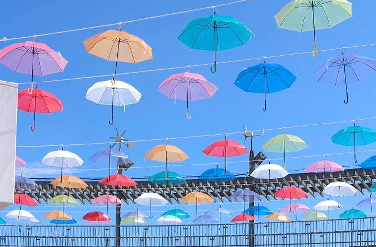 夏の空に虹をかける!淡路島国営明石海峡公園で「れいんぼーあんぶれら」開催中