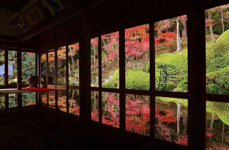 【兵庫県のお寺巡り】紅葉の名所や穴場、話題のスポットを9カ所紹介!