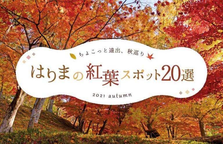 兵庫県の紅葉おすすめスポット20選!見ごろやライトアップ情報も(2021)姫路・丹波周辺