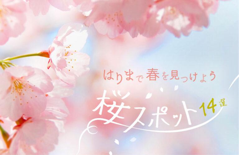 【2021】兵庫・姫路周辺のおすすめ桜スポット14選!花見で春を満喫♪ ライトアップ情報も