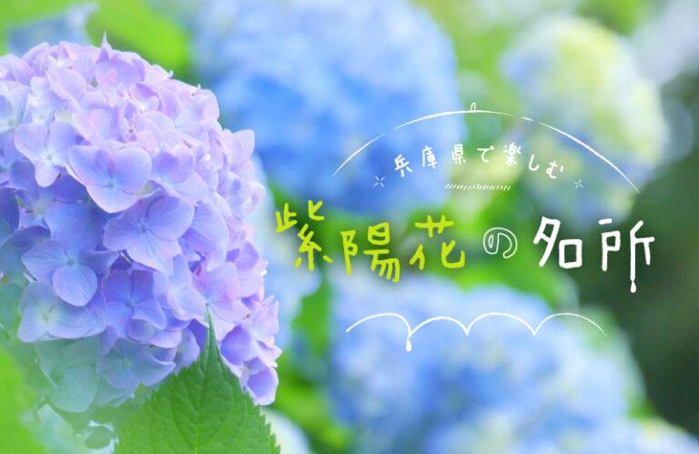 これからが見頃!アジサイが咲き誇る兵庫県のおすすめ名所 2021 絶景スポットを紹介!