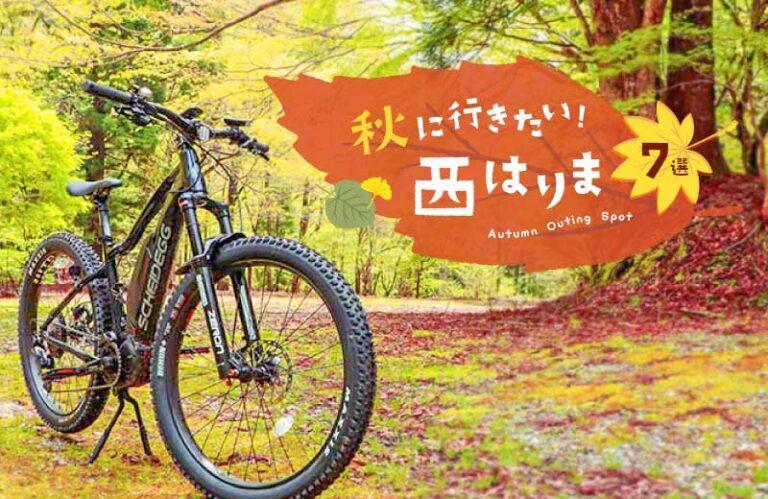 秋に行きたい西播磨の観光スポット7選!紅葉・アクティビティ体験・スイーツ情報満載♪