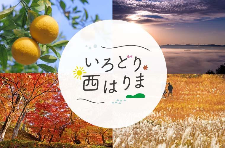 「いろどり西はりま」で秋の絶景スポットやご当地グルメを紹介♪この秋は西播磨へ出かけよう!