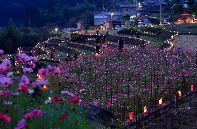 【宍粟】「やまだの里石垣まつり・棚田のあかり」で2021年秋の夜長を楽しんで!